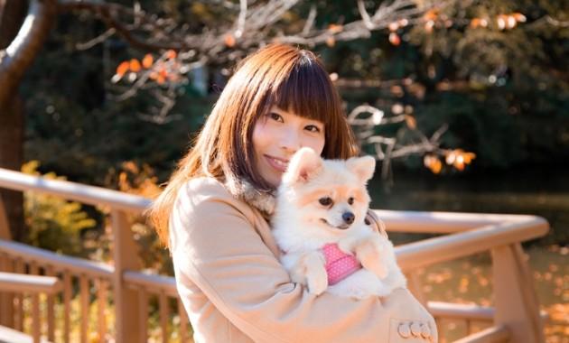 ペットOK!愛犬と巡れるパワースポット 伊豆神祇大社