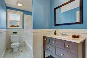 White And Blue Bathroom Interior