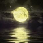 明日『8月24日』まで!【獅子座新月】にお願い事をして幸せになる方法!【カルロッタの新月ワークおまじない】