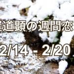【今週の恋愛運】2月14日-2月20日の恋愛運【芦屋道顕の音魂占い】