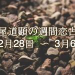 【今週の恋愛運】2月28日-3月6日の恋愛運【芦屋道顕の音魂占い】