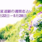5/29~運勢も公開済です【今週の恋愛運】5月22日-5月28日の恋愛運【芦屋道顕の音魂占い】