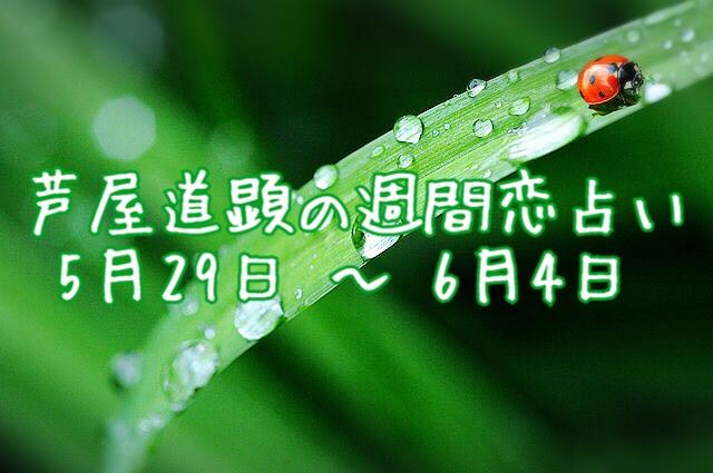 【今週の恋愛運】5月29日-6月4日の恋愛運【芦屋道顕の音魂占い】