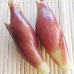 野菜でパワーチャージ★「ミョウガ」を食べて美肌もGET
