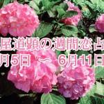 【今週の恋愛運】6月5日-6月11日の恋愛運【芦屋道顕の音魂占い】