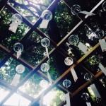 【毎日風水】7月17日~7月23日のおすすめ風水