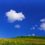 【毎日風水】8月14日~8月20日のおすすめ風水