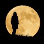 『9月6日』にデートのお誘いをしましょ♪『お月見満月デート』の効果で彼氏、彼女、恋人ゲットよ♪【カルロッタのおまじない】