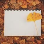 12星座【10月29日の運勢】★幸せを運ぶタリミラの毎日占い