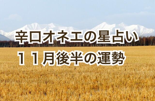 【辛口オネエ】11月後半の運勢◆双子座・天秤座・水瓶座【星占い】