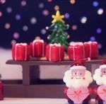 12星座【12月23日の運勢】★幸せを運ぶタリミラの毎日占い