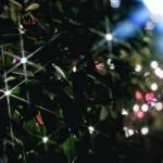 12星座別≪週運≫12月22日 ~ 12月31日の運気★双子座/天秤座/水瓶座